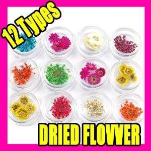 12 Kinds Dried Flower Nail Art Acrylic Decoration 009 Beauty