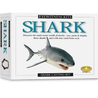 Skullduggery Eyewitness Kit Shark Casting Kit by Skullduggery