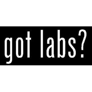 8 White Vinyl Die Cut Got labs? Decal Sticker for Any