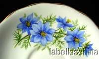 Queen Anne Teacup and Saucer Beautiful Blue Flowers pattern 7878