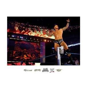WWE Randy Orton Mural Wall Graphic