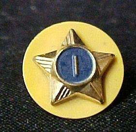 Vintage Cub Eagle Boy Scout Webelo Gold Blue Star 1 Pin