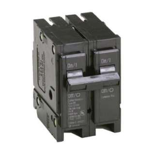 Eaton 100 Amp 2 in. Double Pole Type BR Replacement Circuit Breaker