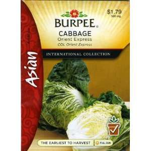 Burpee 69628 Asian   Cabbage, Chinese Orient Express Seed