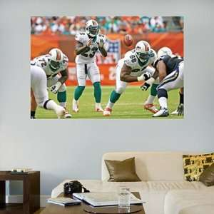 Dolphins Fathead Wall Graphic Wildcat Mural   NFL