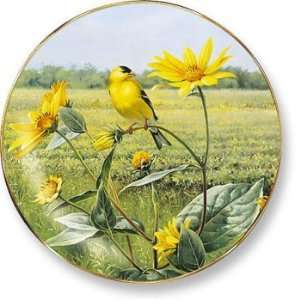 Wild Wings Songbird Plates   Summer Gold Goldfinch Patio