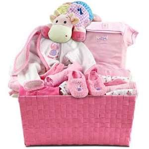 Pink Layette New Baby Girl Gift Basket   Great Shower Gift