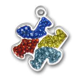 Autism Awareness Puzzle Piece Charms   Choose From 7